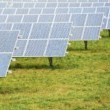 Solar Farm in text
