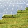 Solar Farm in text